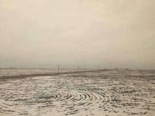 JinLeeTrainView(winterfield)