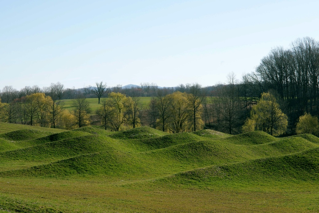 Maya Lin, Storm King Wavefield, 2007-08. Courtesy Storm King Art Center. Photo by Jerry L Thompson